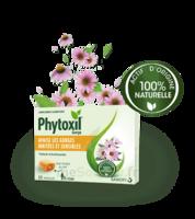 Phytoxil Pastilles Gorge Pastilles Adulte Enfant +12 Ans B/20 à Saintes