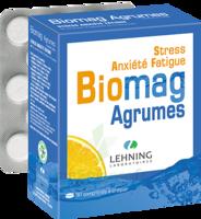 Lehning Biomag Comprimés à Croquer Agrumes B/90 à Saintes