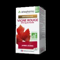 Arkogélules Vigne Rouge Bio Gélules Fl/45 à Saintes