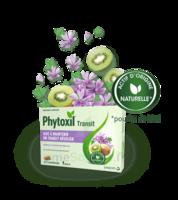 Phytoxil Transit Comprimés B/20 à Saintes