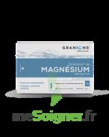 Granions De Magnesium 3,82 Mg/2 Ml S Buv 30amp/2ml à Saintes