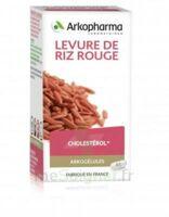 Arkogélules Levure De Riz Rouge Gélules Fl/45 à Saintes