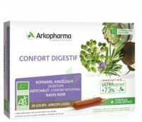 Arkofluide Bio Ultraextract Solution Buvable Confort Digestif 20 Ampoules/10ml à Saintes