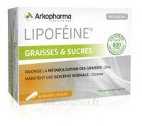 Lipofeine Graisse Et Sucres Gélules B/60 à Saintes