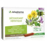 Arkofluide Bio Ultraextract Solution Buvable Détoxifiant Hépatique 20 Ampoules/10ml à Saintes