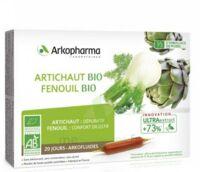 Arkofluide Bio Ultraextract Artichaut Fenouil Solution Buvable 20 Ampoules/10ml à Saintes