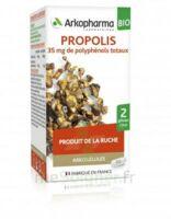 Arkogélules Propolis Bio Gélules Fl/45 à Saintes