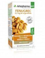 Arkogélules Fenugrec Bio Gélules Fl/40 à Saintes