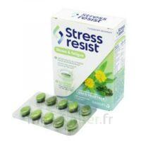 Stress Resist Comprimés Stress & Fatigue B/30 à Saintes