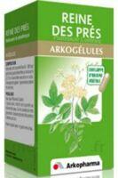 Arkogelules Reine Des Prés Gélules Fl/45 à Saintes