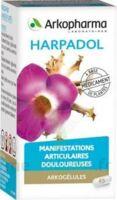 Arkogelules Harpagophyton Gélules Fl/150 à Saintes