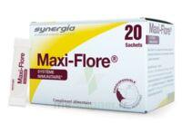 Maxi-flore Sachet Bte20 à Saintes