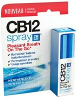 Cb 12 Spray Haleine Fraîche 15ml à Saintes