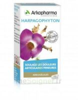 Arkogelules Harpagophyton Gélules Fl/45 à Saintes