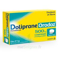 Dolipraneorodoz 500 Mg, Comprimé Orodispersible à Saintes