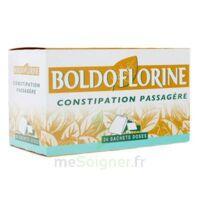 Boldoflorine, Mélange De Plantes Pour Tisane En Sachet-dose B/24 à Saintes