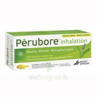 Perubore Caps Inhalation Par Vapeur Inhalation Plq/15 à Saintes