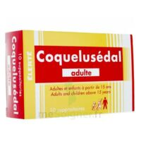 Coquelusedal Adultes, Suppositoire à Saintes