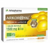 Arkoroyal Gelée Royale Bio 1500 Mg Solution Buvable 20 Ampoules/10ml à Saintes