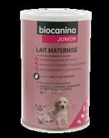 Biocanina Lait Poudre Maternisé B/400g à Saintes
