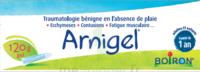 Boiron Arnigel Gel T/120g à Saintes