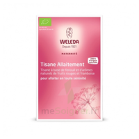"Weleda Tisane Allaitement ""fruits Rouges"" 2x20g à Saintes"