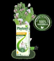Phytoxil Toux Sans Sucre Sirop Adulte Enfant +2 Ans Fl/120ml à Saintes
