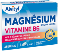 Govital Magnésium Vitamine B6 Comprimés B/45 à Saintes