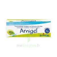 Boiron Arnigel Gel T(alumino-plastique)/45g à Saintes