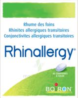 Boiron Rhinallergy Comprimés B/40 à Saintes