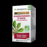 Arkogélules Marronnier D'inde Bio Gélules Fl/45 à Saintes