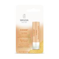 Weleda Soin Des Lèvres Everon® 4,8ml à Saintes