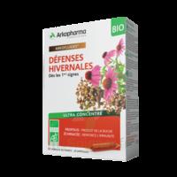 Arkofluide Bio Ultraextract Solution Buvable Défenses Hivernales 20 Ampoules/10ml à Saintes