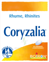 Boiron Coryzalia Comprimés Orodispersibles à Saintes