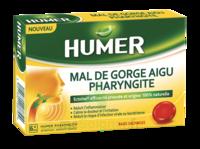 Humer Pharyngite Past Mal De Gorge Baies Sauvages à Saintes
