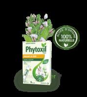 Phytoxil Toux Sans Sucre Sirop Adulte Enfant +6 Ans 12 Sachets/10ml à Saintes