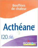 Boiron Acthéane Comprimés B/120 à Saintes